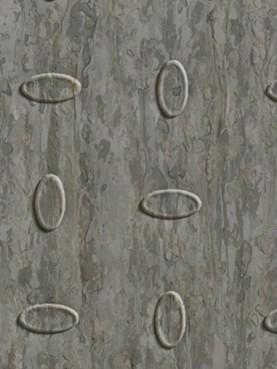 Гомогенные ПВХ покрытия Optima Multisafe Beige Grey