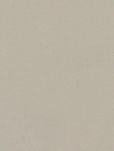 Etrusco Silencio xf2 3.8mm Beige