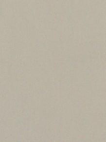Натуральный линолеум Etrusco Silencio xf2 3.8mm Beige