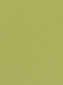 Натуральный линолеум Etrusco Silencio xf2 3.8mm Anise
