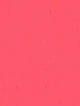 Trentino Silencio XF2 3.8mm Grapefruit