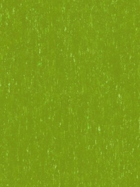 Trentino Silencio XF2 3.8mm Lime