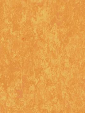 Veneto Sicuro XF2 R10 Sunflower