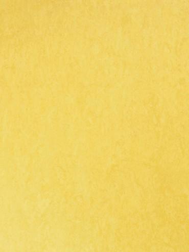 Style Emme Silencio XF 3,8mm Giallo