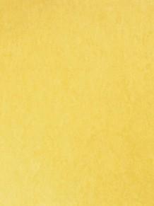 Натуральный линолеум Style Emme Silencio XF 3,8mm Giallo
