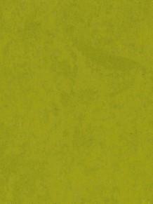 Натуральный линолеум Style Emme Silencio XF 3,8mm Verde