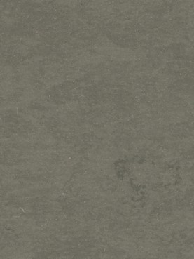 Натуральный линолеум Style Emme Silencio XF 3,8mm Ferro