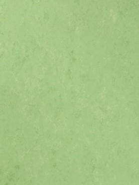Veneto XF2 Bfl Apple Green