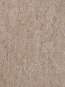 Натуральный линолеум Veneto XF2 Bfl Fossil