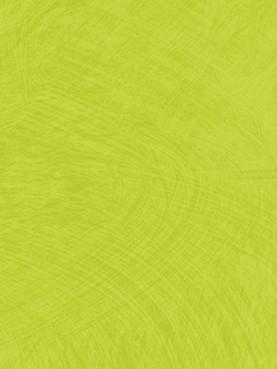 Lumaflex Duo Omnisports Reference Esquisse Light Green