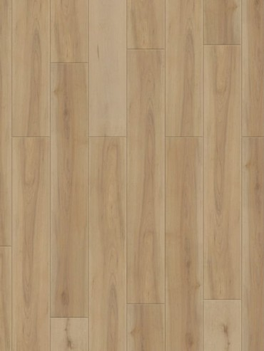 Starfloor Click 30 & 30 PLUS Beech Natural