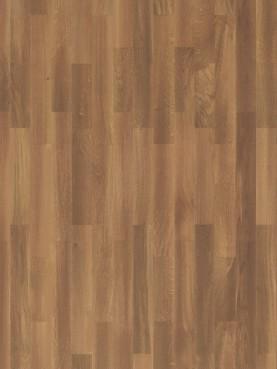 Salsa  Oak Cinnamon
