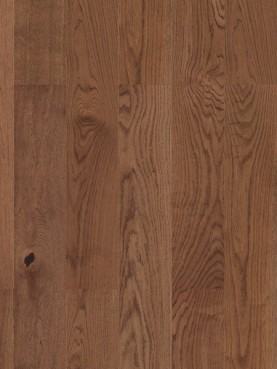 Step Oak Baron Sienna L