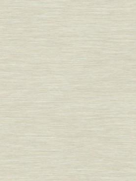 Delicate Wood White