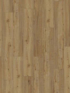 Виниловая плитка Starfloor Click 30 & 30 PLUS Soft Oak Natural