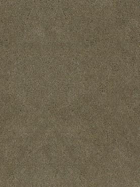 Ковровое покрытие Desso Asteranne 2941