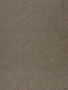 Ковровое покрытие Desso Asteranne 9003