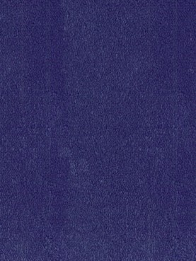 Ковровое покрытие Desso Asteranne 9021