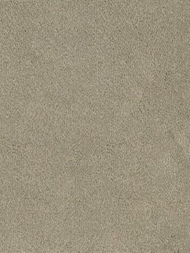 Ковровое покрытие Desso Asteranne 9086