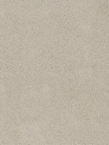 Ковровое покрытие Desso Asteranne 9538