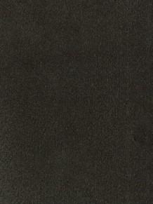 Ковровое покрытие Desso Asteranne 9990
