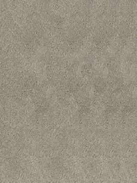 Ковровое покрытие Desso Asteranne 9536