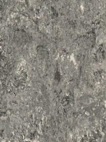 Натуральный линолеум Veneto XF2 2.0 mm Pebble